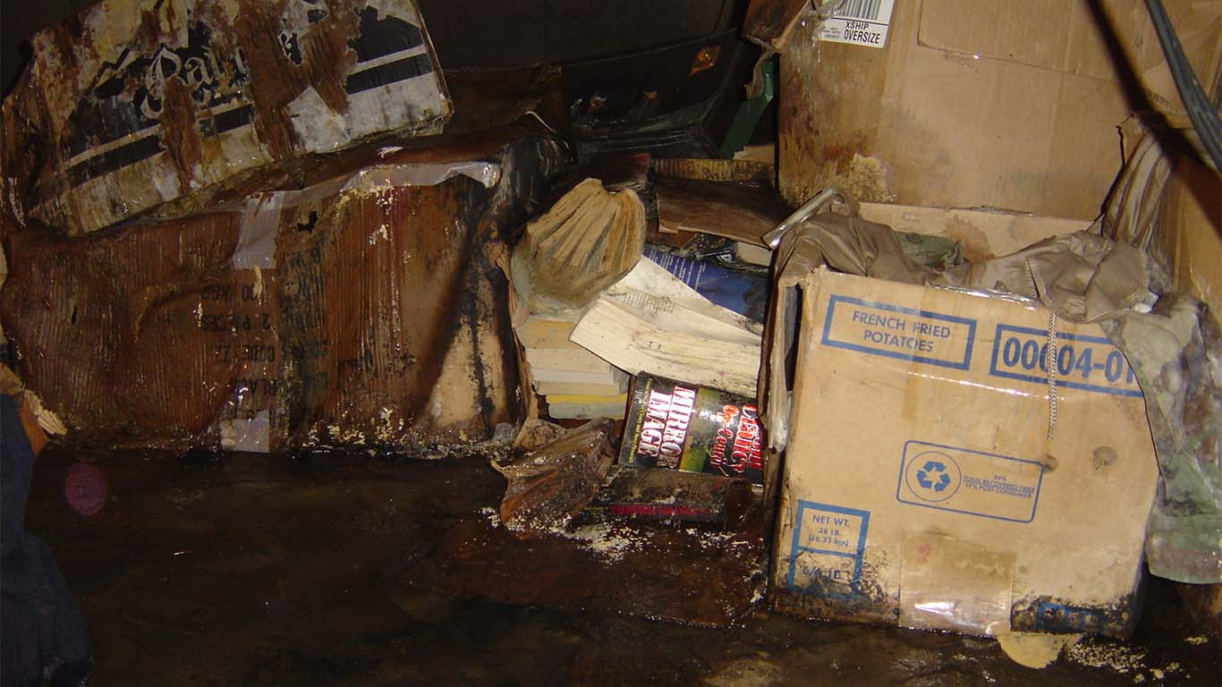 Water Damage in Crawl Space