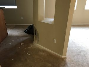 Water damage on floor