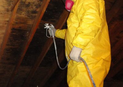 Wet Attic Cleanup
