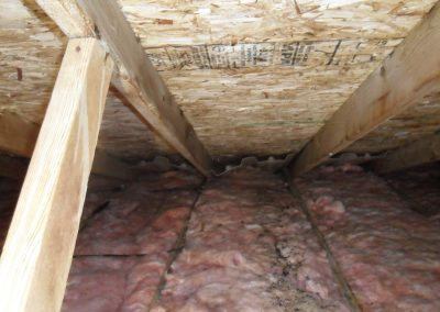 Attic mold growth after